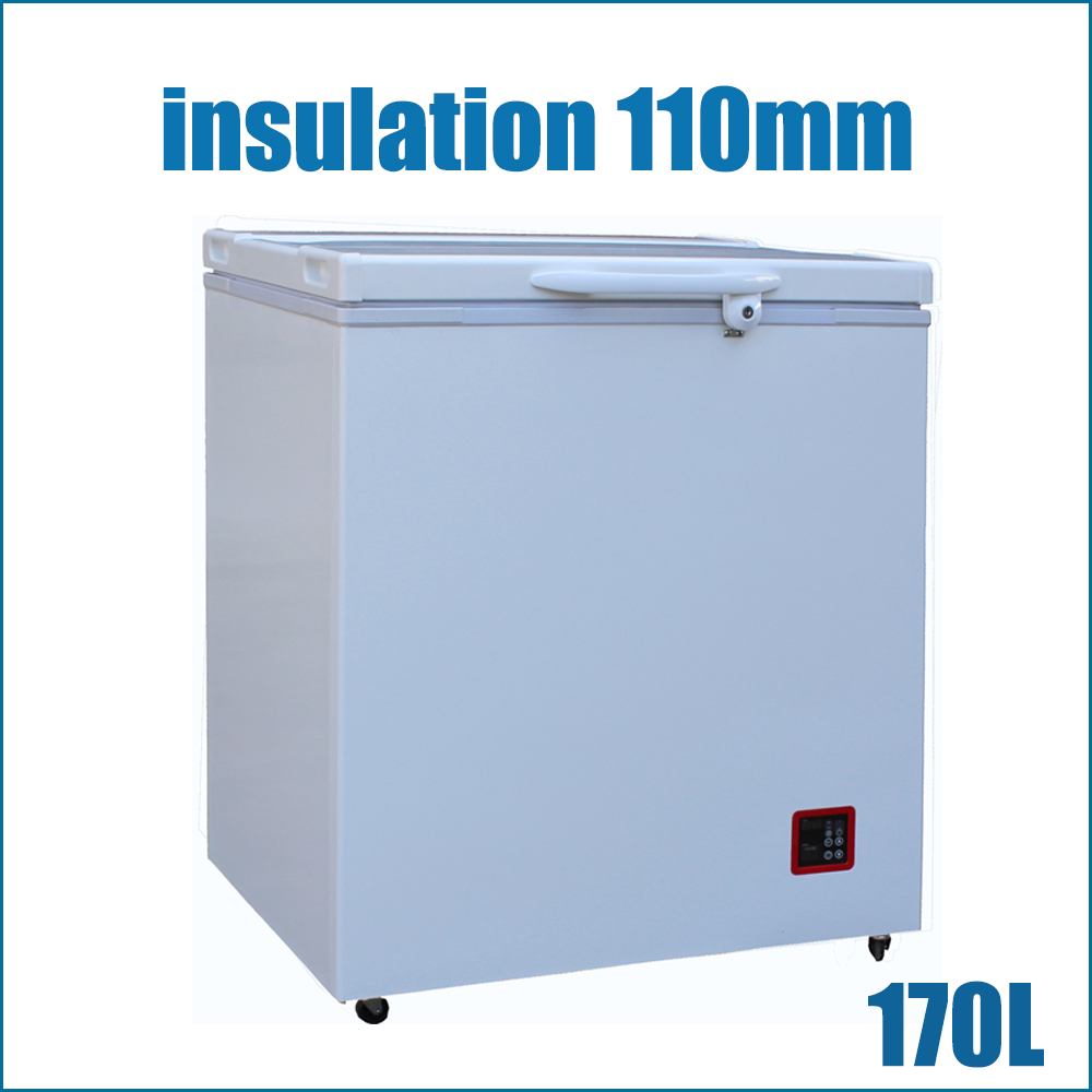 Ultra Energy Efficient Solar (Battery) Powered Freezer(BR170F)