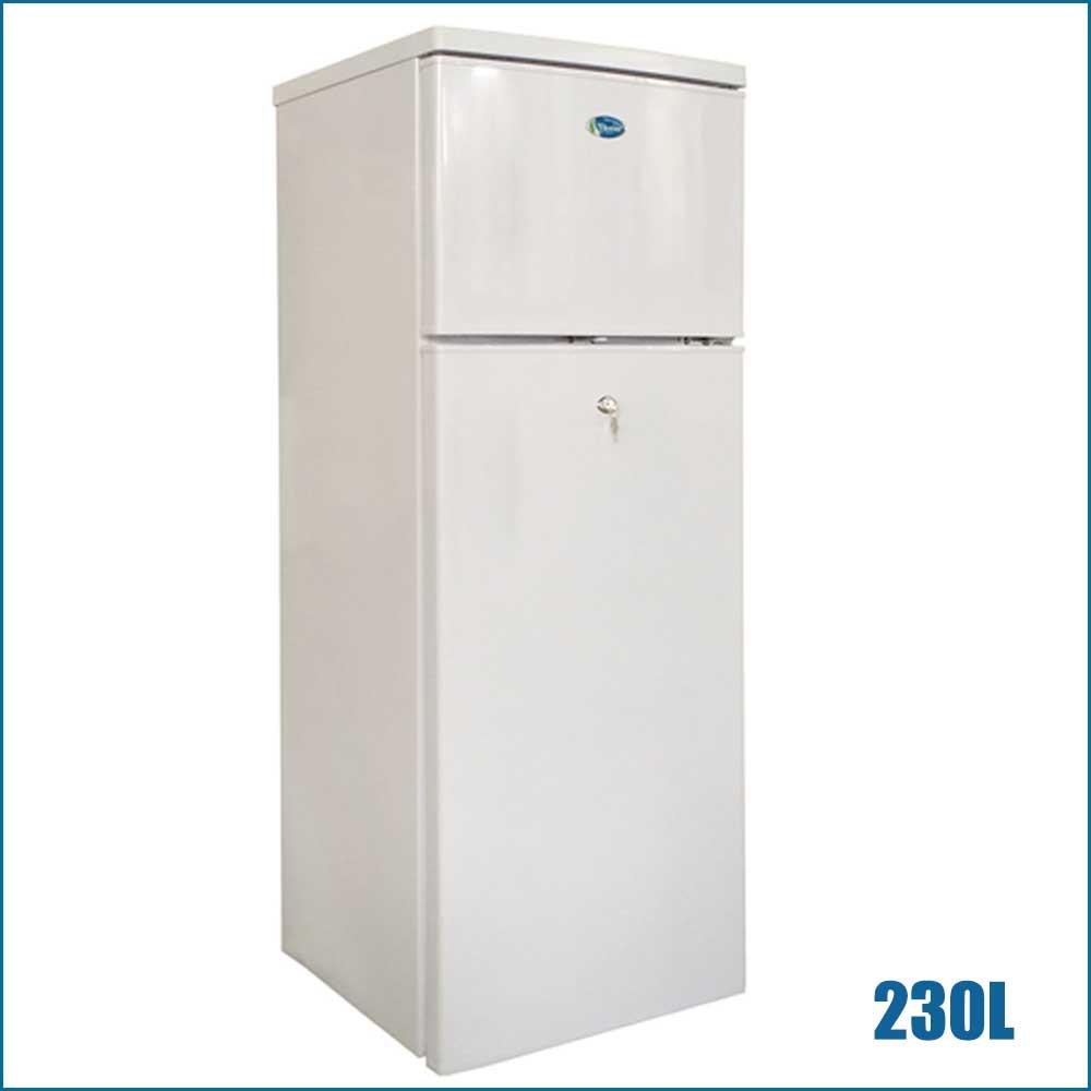 DC 12V/24V Solar Refrigerator (230L)